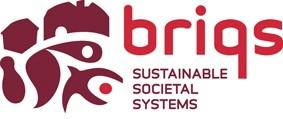 VIBA Café 6 november: Remko Zuidema van Stichting Briqs